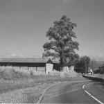 web-bury-lane-epping-bury-farm-1975-marked-on-back-691