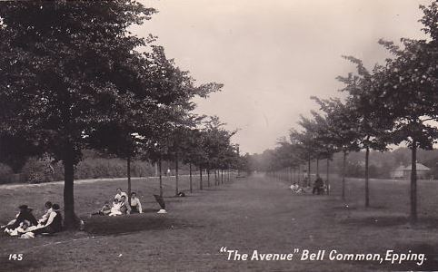 006 BELL COMMON AVENUE