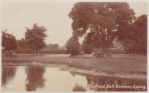 010 BELL COMMON POND (2) sepia