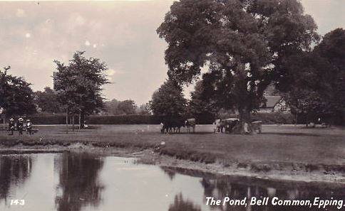 011 BELL COMMON POND (2)