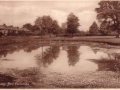 009 BELL COMMON POND (1)