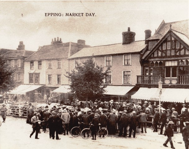 Epping market Day