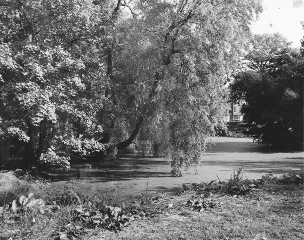 Theydon Grove Epping Pond  Stuart Turner 1975 123